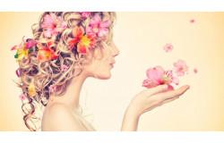 Шаблон Магазин цветов на Opencart 2
